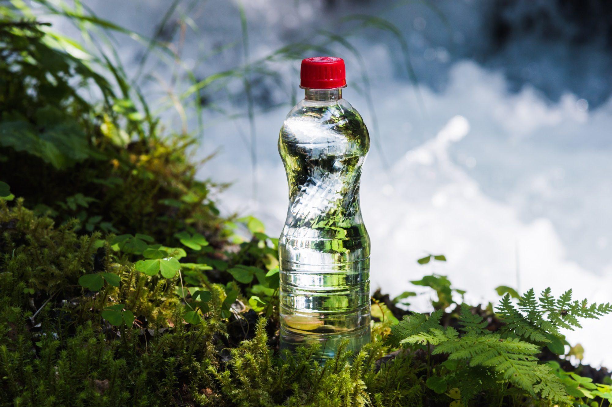 Nachhaltigkeit & Verpackung am Beispiel einer Plastikflasche in der Natur